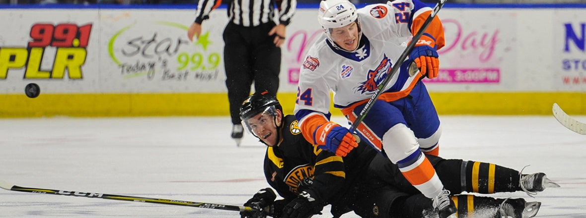 Sound Tigers Stumble in 4-0 Loss To Bruins